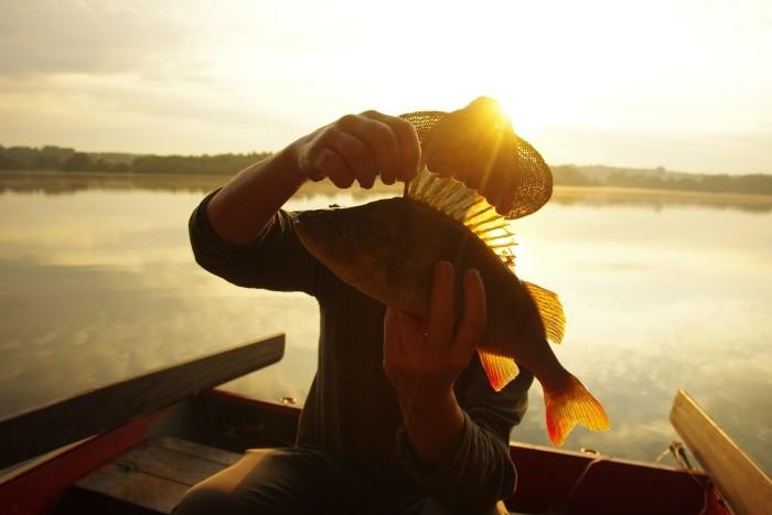 Chuť rybářského šílenství